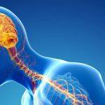 Περιεμμηνόπαυση, Health path