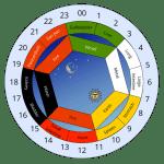 Δείτε το βιολογικό ρολόι του σώματος σύμφωνα με την παραδοσιακή κινεζική ιατρική